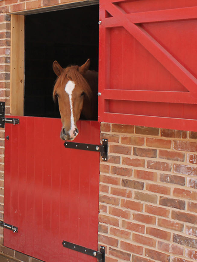 Equestrian Stable Doors Manufacturer Solid Oak And Soft